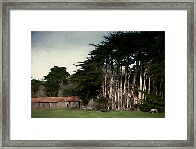 Ranch With Cypress Framed Print