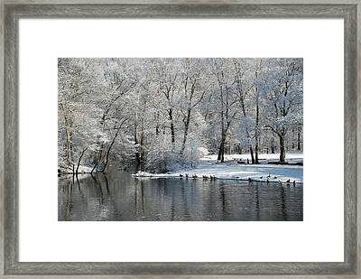 Rancocas Creek Framed Print by Elaine Walsh