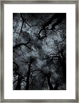 Random Thoughts - Nature Abstract Framed Print by Steven Milner