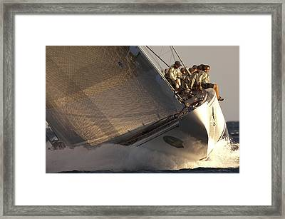 Ranger Framed Print by Chris Cameron