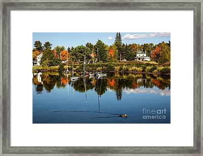 Rangley Lake Maine Framed Print by Brenda Giasson
