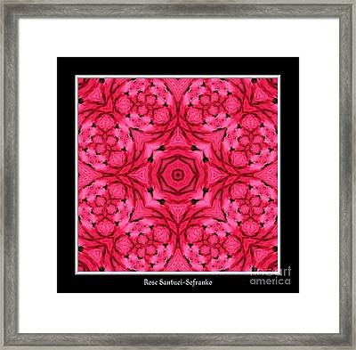 Ranunculus Flower Warp Framed Print by Rose Santuci-Sofranko