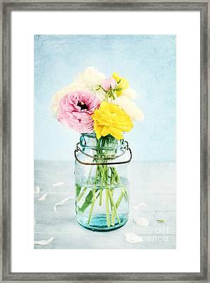Ranunculus In A Mason Jar Framed Print by Stephanie Frey