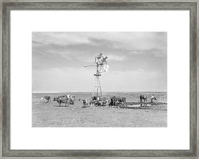 Rapidly Drying Waterholes Cover The North Dakota Ranges Framed Print