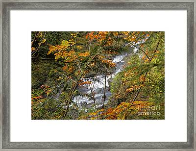 Rapids Through The Autumn Framed Print by Darleen Stry