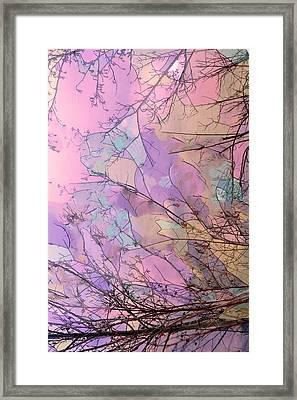 Rapture Framed Print by Kathy Bassett