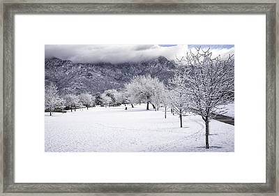 Rare Snowfall Framed Print