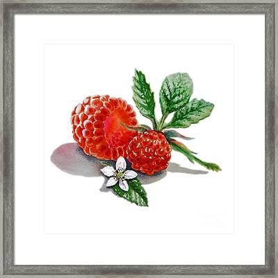 Raspberries  Framed Print by Irina Sztukowski