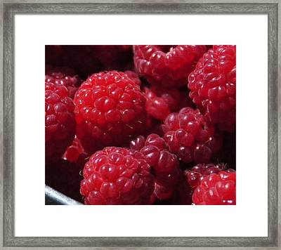 Raspberry Crave Framed Print by Elena Hasnas