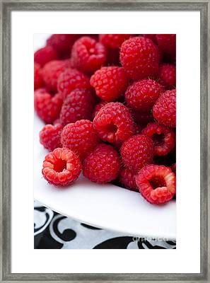 Raspberry Red Framed Print by Anne Gilbert