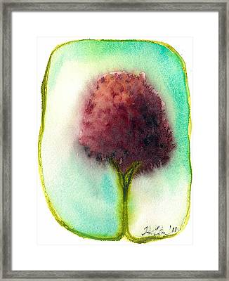 Raspberry Tree Framed Print by Hilary Slater