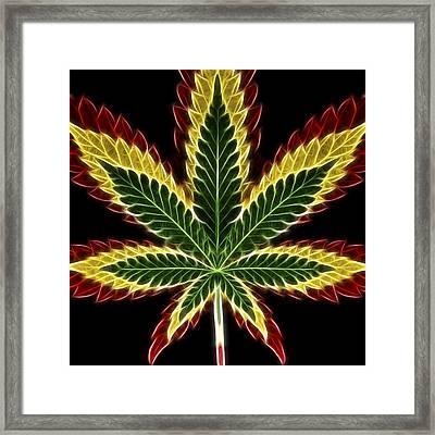 Rasta Marijuana Framed Print by Adam Romanowicz