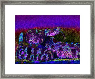 Rattlesnake 20130204m133 Framed Print