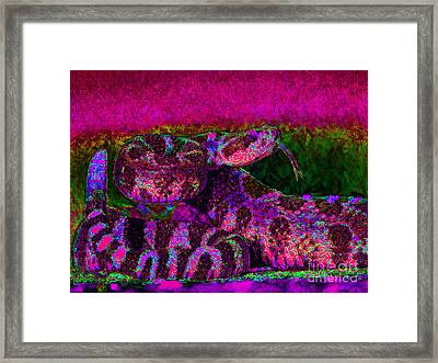 Rattlesnake 20130204m80 Framed Print by Wingsdomain Art and Photography