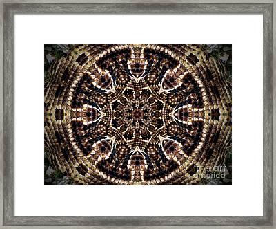 Rattlesnake Circle Framed Print