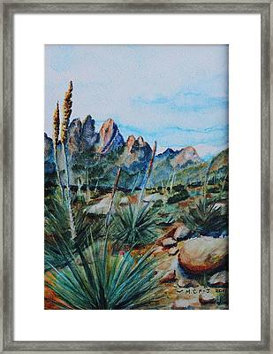 Rattlesnake Told Me To Follow The Sun Framed Print