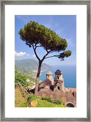 Ravello Pine Framed Print