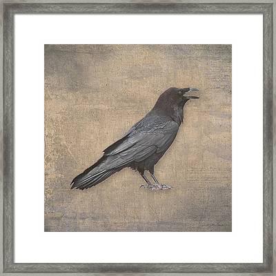 Raven Digital Art In Old World Antique Style Framed Print by Julie Magers Soulen