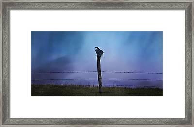 Raven In The Rain Framed Print by Theresa Tahara