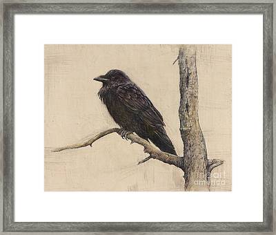 Raven Framed Print by Lori  McNee