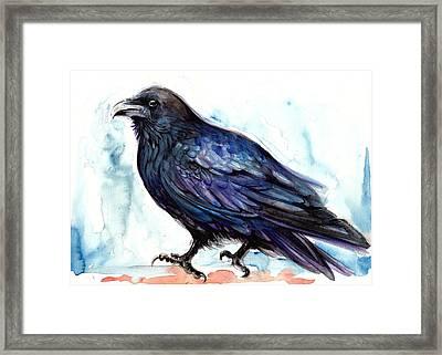Raven Resting - Bird Art Watercolor Framed Print by Tiberiu Soos