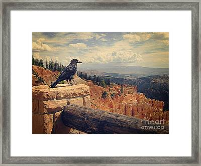 Raven's Eye View Framed Print