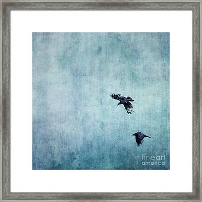 Ravens Flight Framed Print by Priska Wettstein