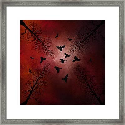 Ravens In The Sky Framed Print