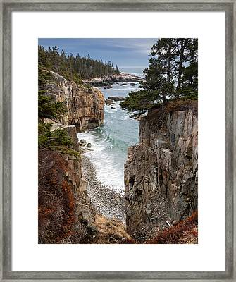 Raven's Nest Framed Print by Patrick Downey
