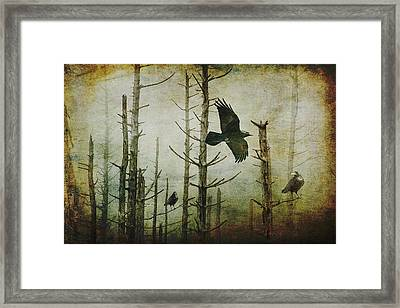 Ravens Of The Mist Artistic Expression Framed Print by Randall Nyhof