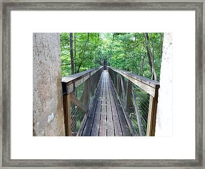 Ravine Bridge 2 Framed Print by Kay Gilley