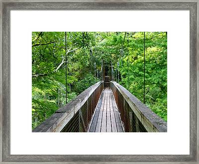 Ravine Bridge 3 Framed Print