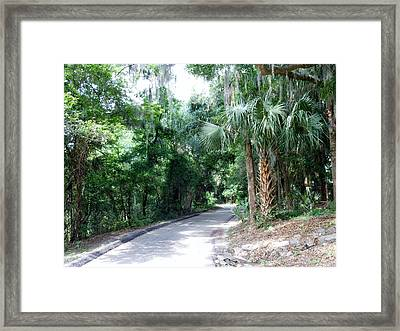 Ravine Drive Framed Print by Kay Gilley
