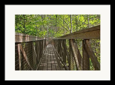 Palatka Bridge Framed Prints