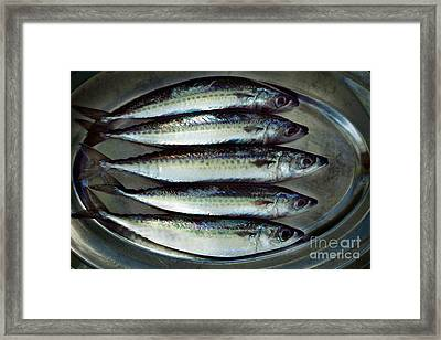 Raw Fish Framed Print by Mythja  Photography