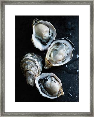 Raw Oysters Framed Print by Jack Andersen