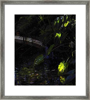 Ray Of Hope Framed Print by Silke Brubaker