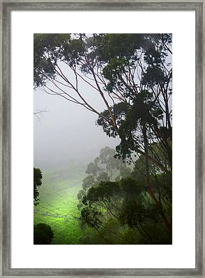 Ray Of Hope. Sri Lanka Framed Print
