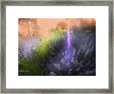 Framed Print featuring the photograph Rayo De Luz by Alfonso Garcia