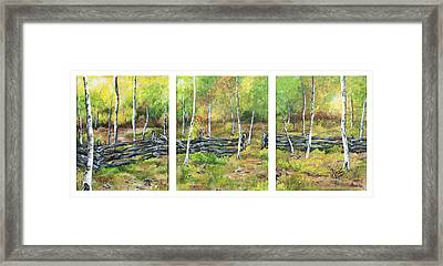 Ray's Meadow Framed Print