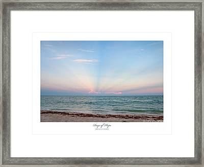 Rays Of Hope Framed Print by Michelle Wiarda
