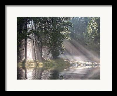 Rosevelt National Forest Framed Prints