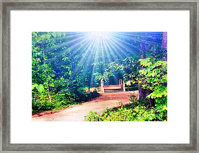 Rays Of Light To Guide The Path Framed Print