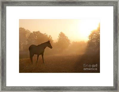 Rays Of Sunrise Framed Print
