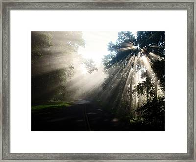 Rays On The Road  Framed Print by Davids Digits