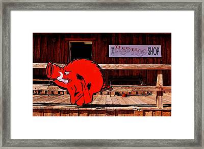 Razorback Country Framed Print by Benjamin Yeager