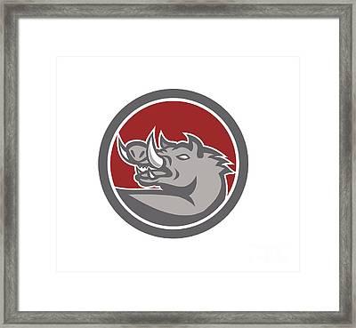 Razorback Head Looking Up Circle Framed Print