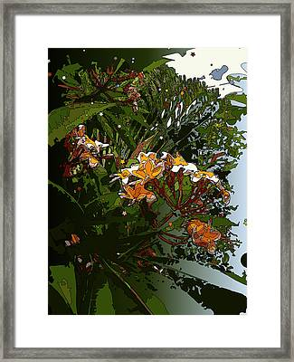 Reach For The Sky Framed Print by Stacy Vosberg