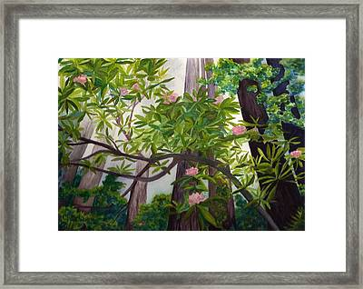 Reach For The Sky Framed Print by Vikki Wicks