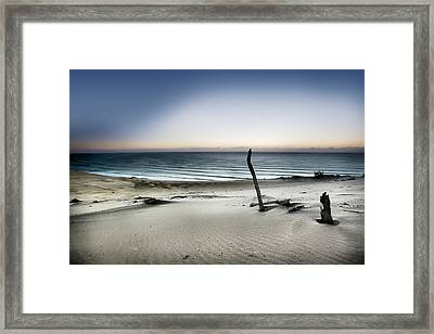 Reach For The Sun Framed Print